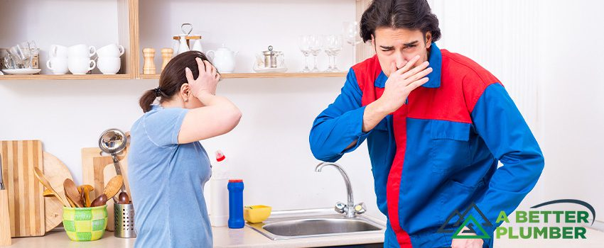 5 Reasons Why Your Kitchen Sink Smells and How to Get Rid of It