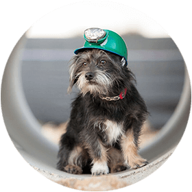 Find Top Denver Plumbing Companies | Do You Need A Sewer Inspection?